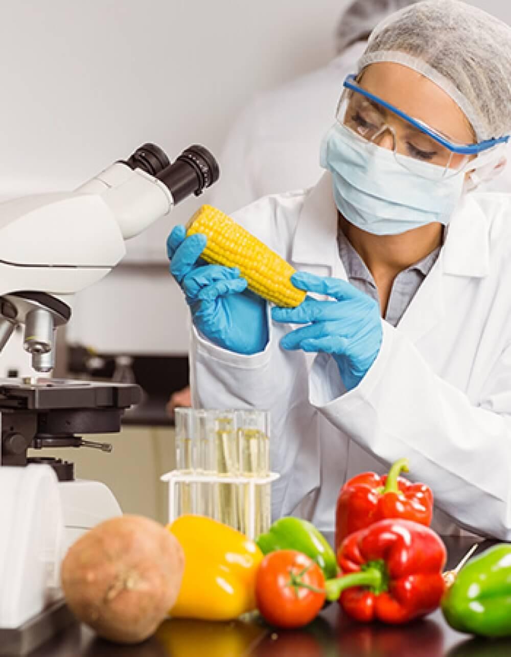 Güvenli Gıda Nedir?